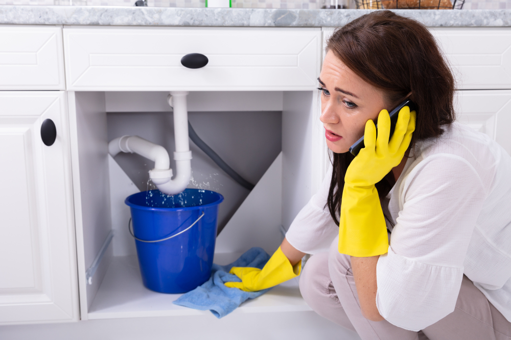 Choosing A Company For Your Kitchen Plumbing In Seattle