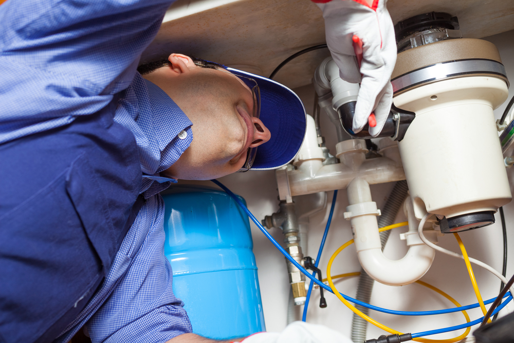 Choosing A Company For Your Garbage Disposal Installation & Repair Service In Duvall