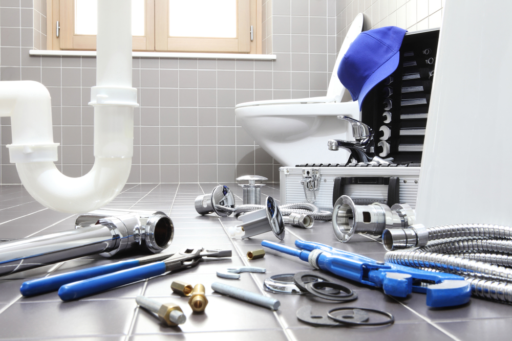 Discover Affordable Bathroom Plumbing in King County